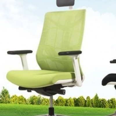 CHAIR EXECUTIVE HIGH BACK N900 NATURE SLIDING